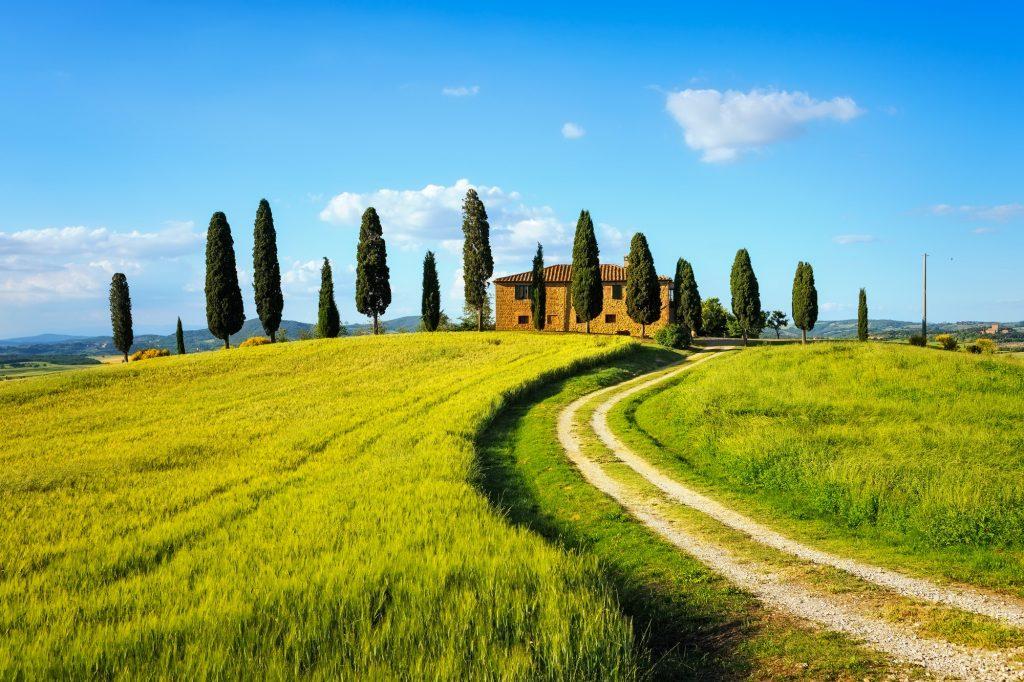 Tuscany, farmland, cypress trees and white road on sunset. Siena